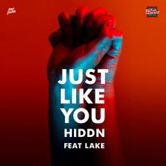 Just Like You - HIDDN, Lake