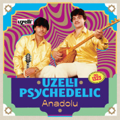 Uzelli Psychedelic Anadolu - Various Artists
