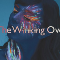 Into Another World - The Winking Owl