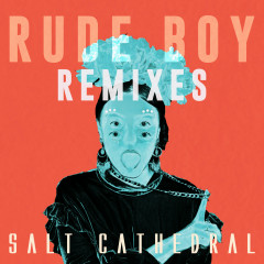 Rude Boy (Remixes) - Salt Cathedral