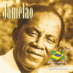 Enciclopédia Musical Brasileira - Jamelao