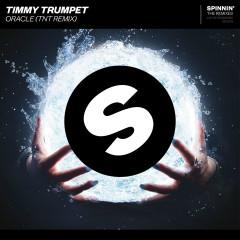 Oracle (TNT Remix) - Timmy Trumpet