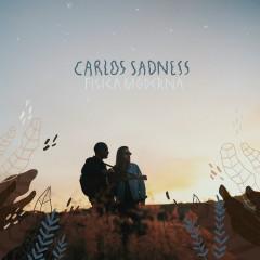 Física Moderna en Invierno - Carlos Sadness