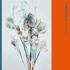 Fireworks - FlowBack