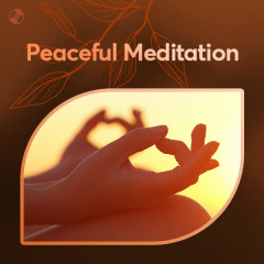 Peaceful Meditation - Various Artists