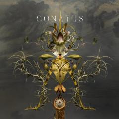 Conatus - Joep Beving