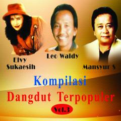 Kompilasi Dangdut Ter Populer, Vol. 3 - Various Artists