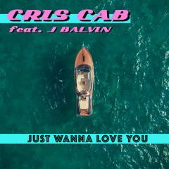 Just Wanna Love You (Single)