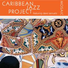 Mosaic - Caribbean Jazz Project, Dave Samuels