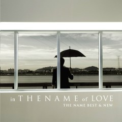 in THE NAME of LOVE (The Name Best & New) - The Name