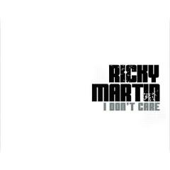 I Don't Care - Reggaeton Mixes - Ricky Martin, Fat Joe, Amerie