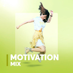 Motivation Mix