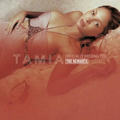 Officially Missing You (U.S. CD Maxi Single Remixes) - Tamia