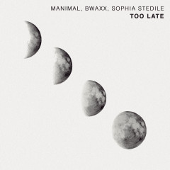 Too Late (Radio Edit) - Manimal, BWAXX, Sophia Stedile