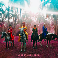 Playa Grande (Uproot Andy Remix)