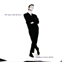 The Ups And Downs - Stephen Duffy