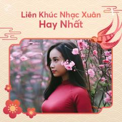 Liên Khúc Nhạc Xuân Hay Nhất - Various Artists