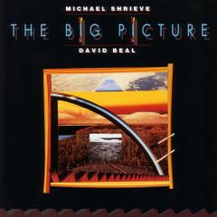The Big Picture - Michael Shrieve, David Beal