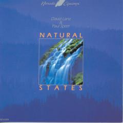 Natural States - David Lanz, Paul Speer