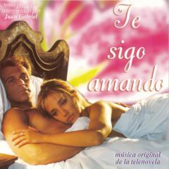 Te Sigo Amando - Various Artists