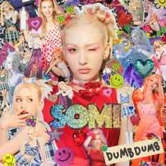 DUMB DUMB (Single)