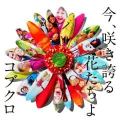 Ima Sakihokoru Hanatachiyo - Kobukuro
