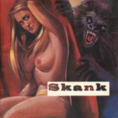O Samba Poconé - Skank