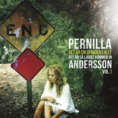 Det är en spricka i allt, det är så ljuset kommer in - Vol. 1 - Pernilla Andersson