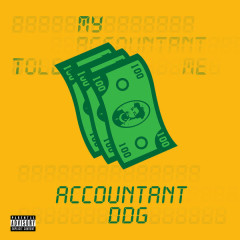 Accountant (Single)