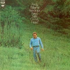 Raindrops Keep Fallin' On My Head - Andy Williams