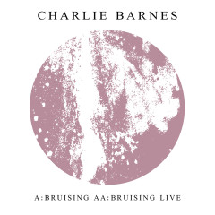 Bruising - Charlie Barnes