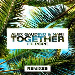 Together (Remixes) - Alex Gaudino