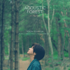 The Acoustic Forest - Yoon Do Hyun