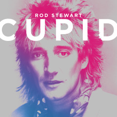 Cupid - Rod Stewart