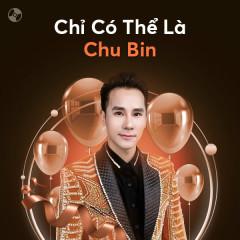 Chỉ Có Thể Là Chu Bin - Chu Bin