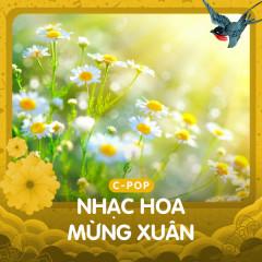 Nhạc Hoa Mừng Xuân