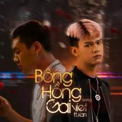 Bông Hồng Gai (Single) - Việt, Xan