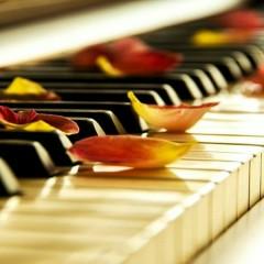 Hòa Tấu Piano Hay Nhất Thế Giới