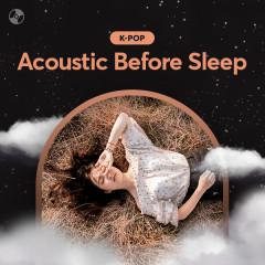 Acoustic Before Sleep - Various Artists