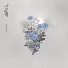 Moon Halo - So Hee Song