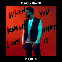 When You Know What Love Is (Remixes) - Craig David