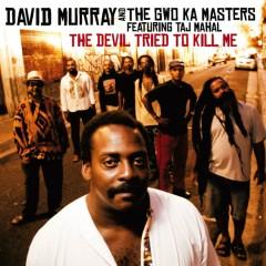 The Devil Tried To Kill Me (feat. Taj Mahal) - David Murray, The Gwo-Ka Masters, Taj Mahal
