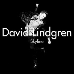 Skyline [Remixes] (Remixes)