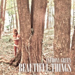 Beautiful Things - Anthony Green