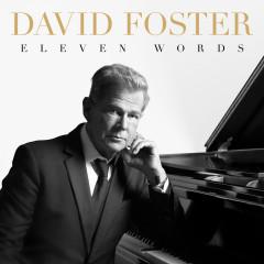 Eleven Words - David Foster