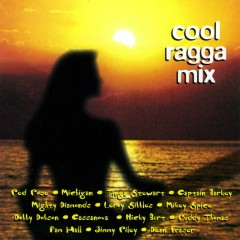 Cool Ragga Mix - Various Artists