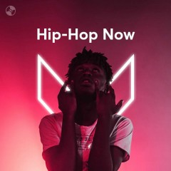 Hip-Hop Now - Various Artists