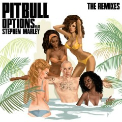 Options (The Remixes) - Pitbull, Stephen Marley