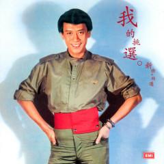 Roman Tam Ji Nian Quan Ji Vol.7: My Collections(Xin Qu + Jing Xuan) ((新曲+精選)) - Roman Tam