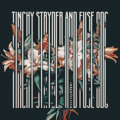 Imperfection - Mixes - Tinchy Stryder, Fuse ODG